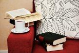 armchair-book-books-photo